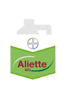 Aliette WG