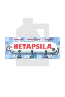 Netapsila
